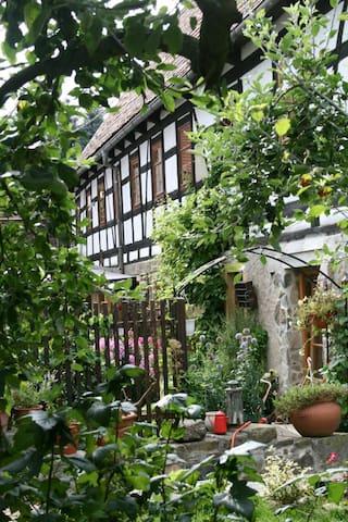 Landidylle in Stadtnähe... - Triebischtal - House