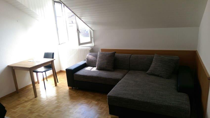 Geneva Studio - Hotel Experience - Carouge - Loft