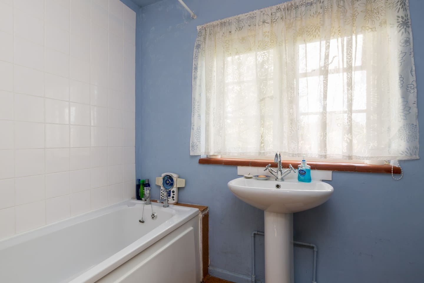 Blue bathroom (shared with owner)