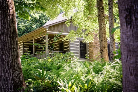 The Cabin at Magic Tree Sanctuary
