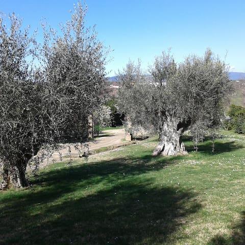 Appart  indip, giardino privato, in casale toscano
