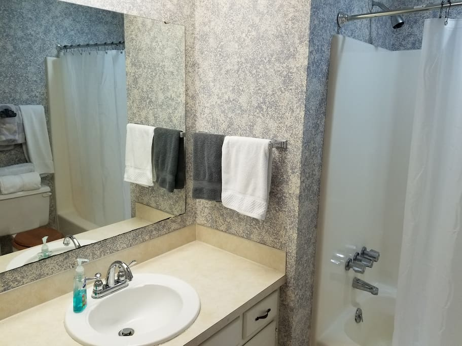 Full Bathroom (Connected to bedroom)