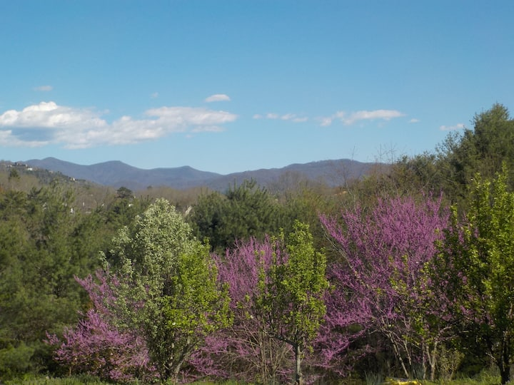 Lovely Blue Ridge Haven Near Asheville, NC!