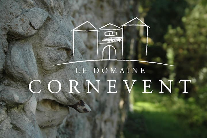 LOFT 75 m² dans domaine aux portes de Lyon