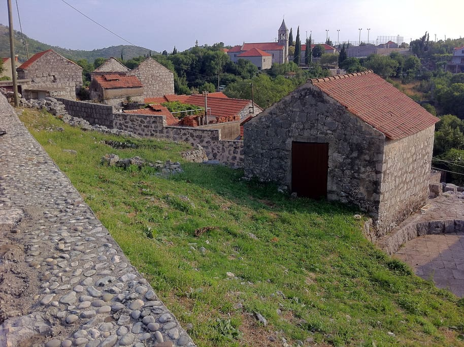A cluster of traditional cottages in Osojnik