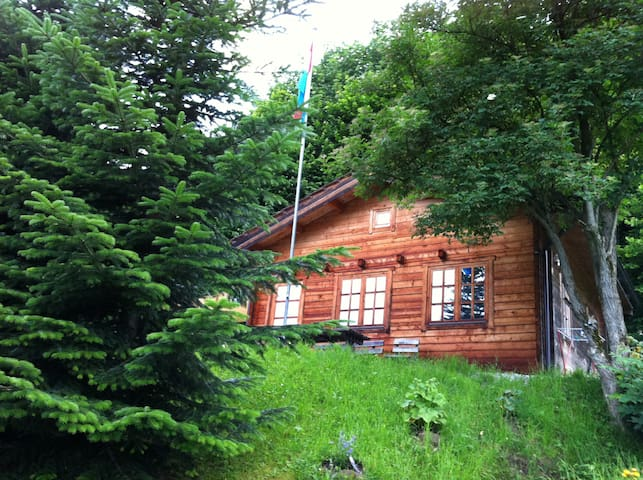 Idyllische Blockhütte in der Natur - Altstätten - Chalet