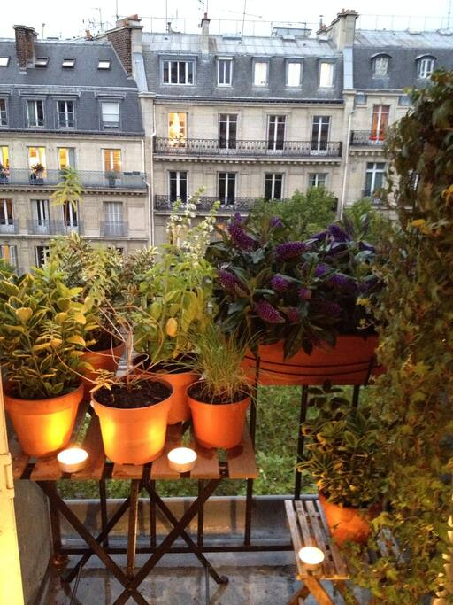 Enjoy the urban jungle on the balcony