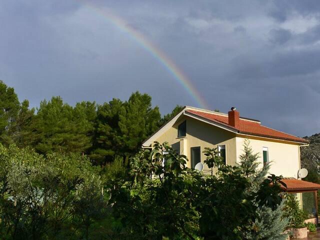 Natura e atmosfera familiare - Monreale - Bed & Breakfast