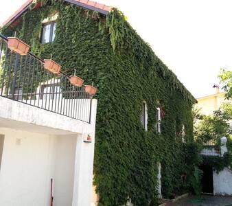Casa Agricola do Limonete - Figueira da Foz