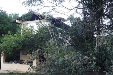 Charming little house - Ilha de Boipeba, Bahia - Дом