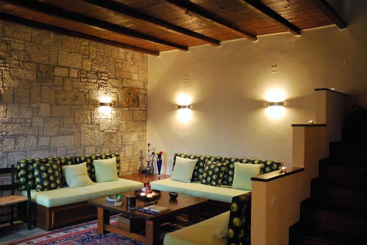 Vila Pertouli Traditional House - Trikala - Chalet