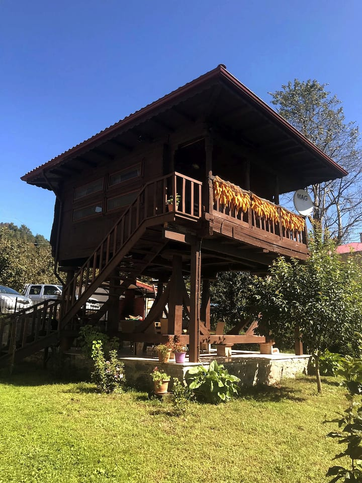 Parpali serender with outstanding nature view