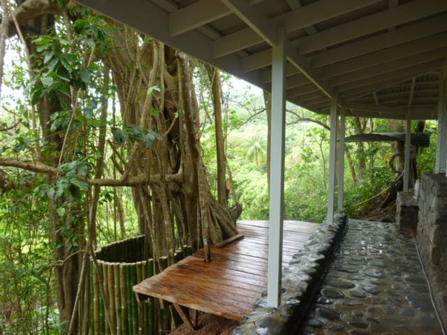 Banyan stone tree house at CitrusCreekPlantation - La Plaine - Casa