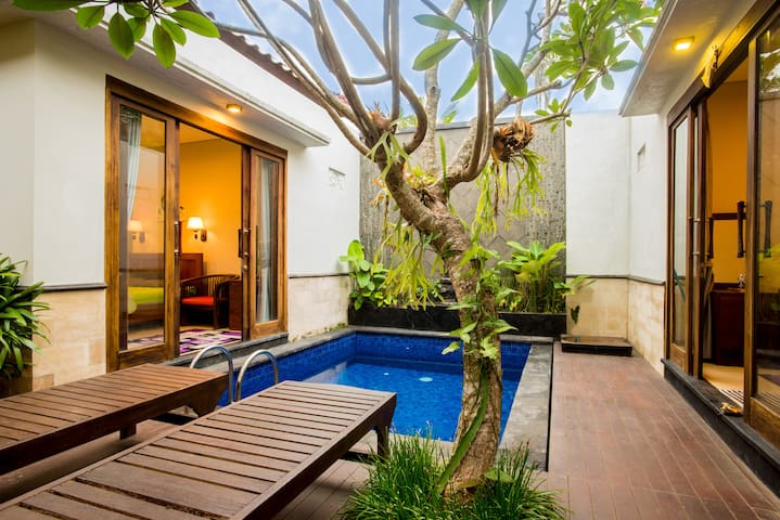 The house with the plunge pool by affordable price