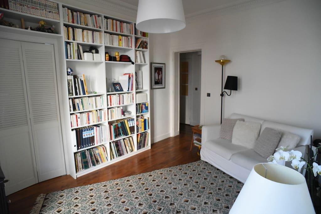 Salon et sa bibliothèque