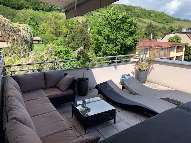 Flat 160 sq m/2 Terrasse / Vienna wood / wineyards