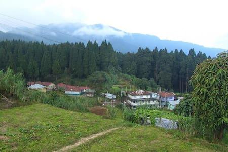 Live in the Hills/Diki's Homestay - Darjeeling