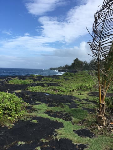 Makuu Point. Feel the lava rumble beneath your feet and feel the spray of the ocean as you hike or picnic along the amazing Puna coastline.