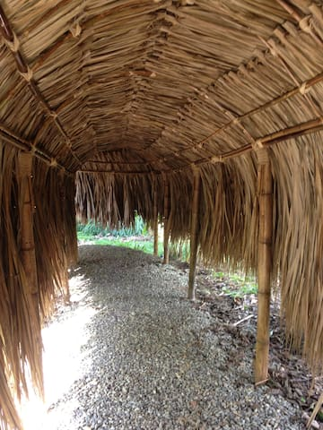 A covered path between the bathroom and cabana