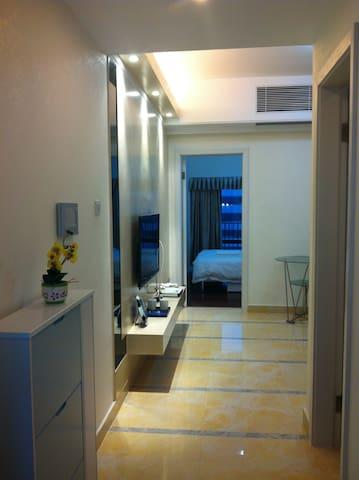 罗湖关口/东门附近一房一厅公寓.天租月租均可 - Shenzhen - Appartement