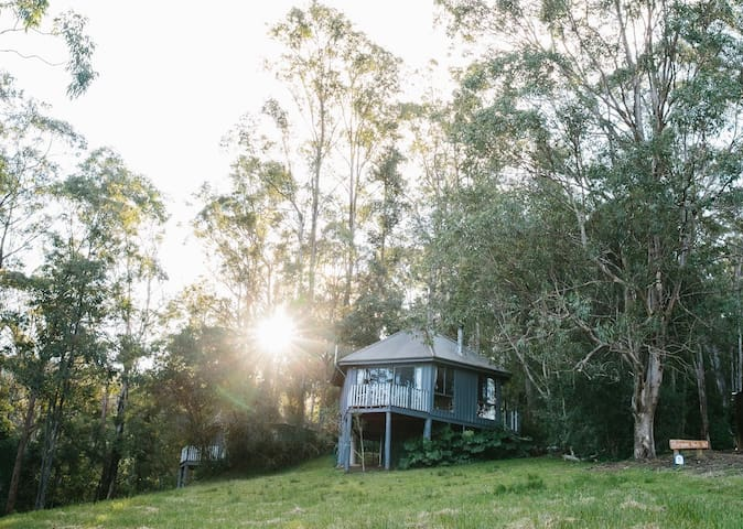 Bluegums Nest Cabin @ Barrington Tops (Nest 1)