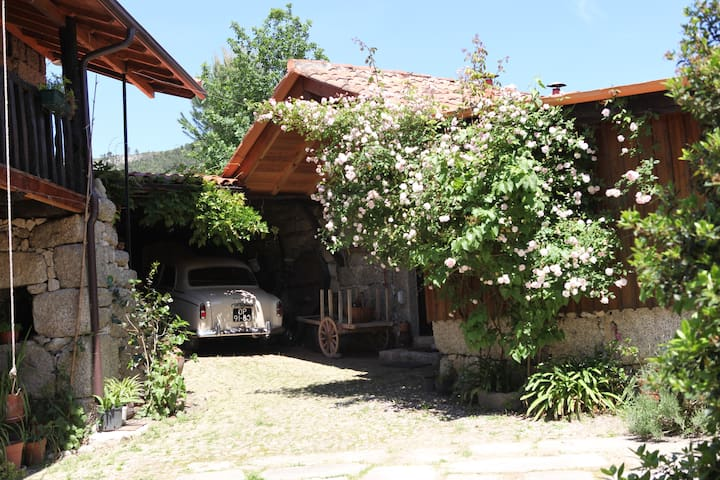 Casinha na Quinta da Bouça - Celorico de Basto / Braga - House