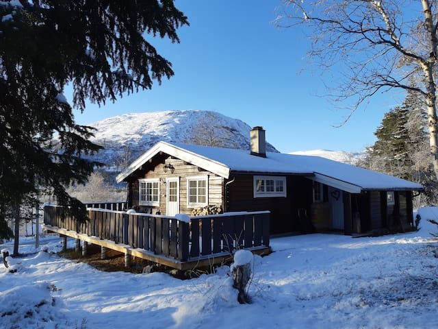 Nice cabin at Bjorli. Close to ski-resort