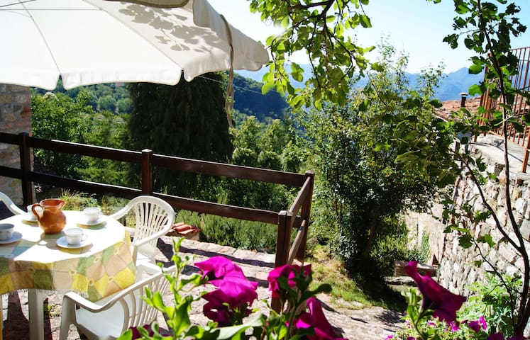 In the ancient mountain village... - Villa Collemandina - Talo