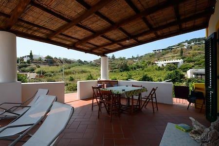 Villa Giulia Salina - Lingua