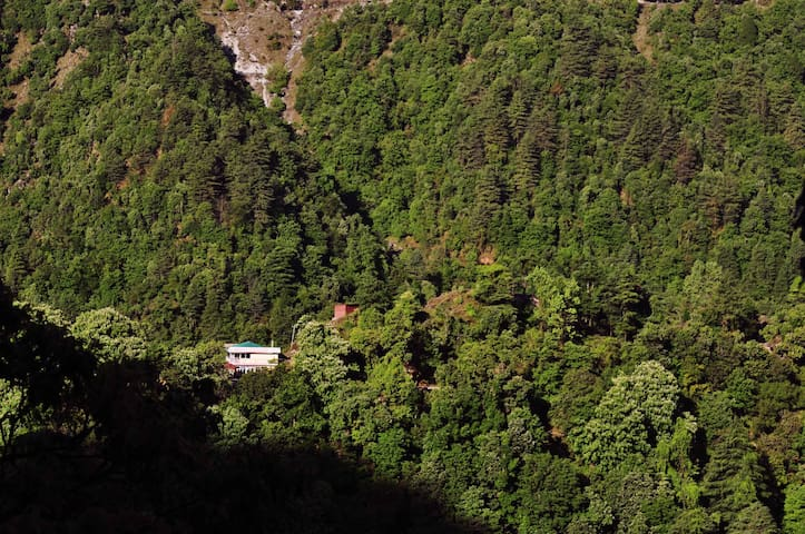 A quite and isolated boutique B&B-1 - Mussoorie - Penzion (B&B)
