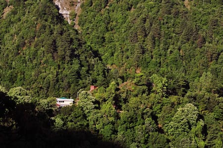 A quite and isolated boutique B&B-1 - Mussoorie - Oda + Kahvaltı