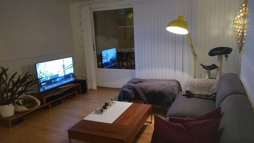 Room in spacious apartment near Ladestien. - Trondheim - Byt