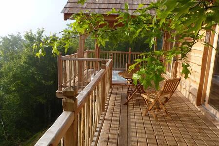 Cabane-spa dans le Périgord noir - Salignac-Eyvigues - 树屋