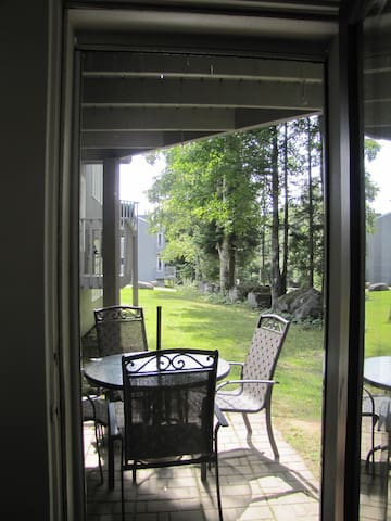 Patio right outside your door, view from living room (1001)
