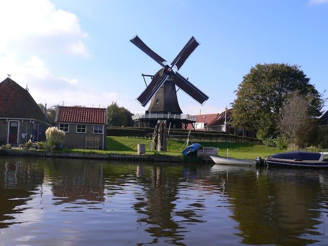 Sondel Friesebedstee Friesland
