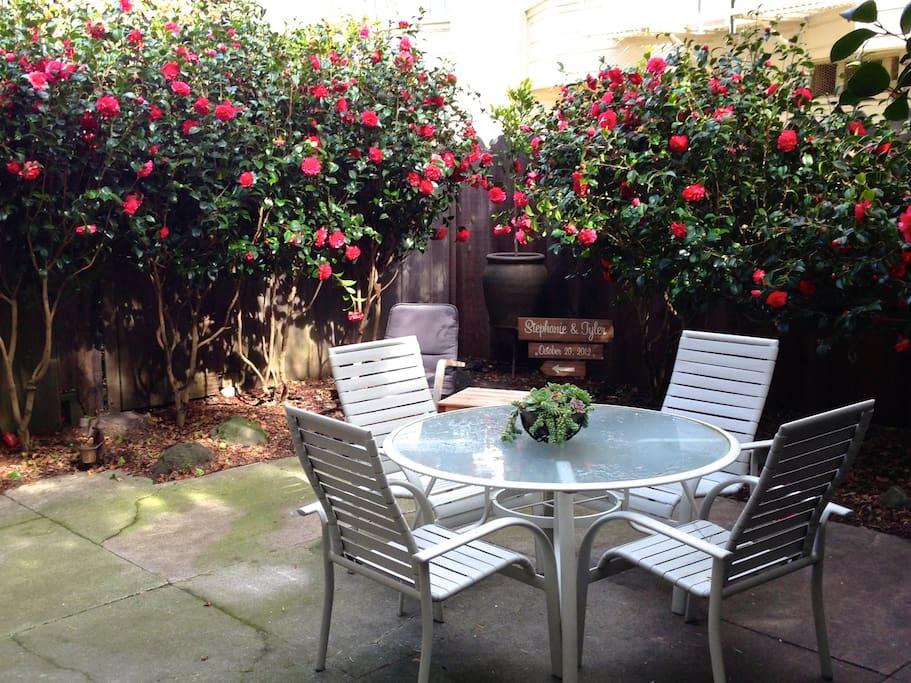 Camellia garden is in bloom from Mar-Apr & Oct-Nov