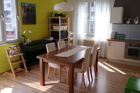Nice, sunny flat in quiet, green area - Graz
