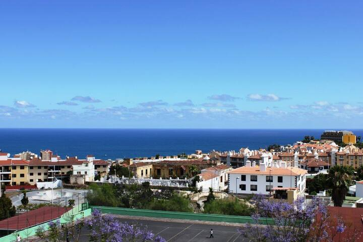 Bright Attic in Puerto de la Cruz - Puerto - Apartment