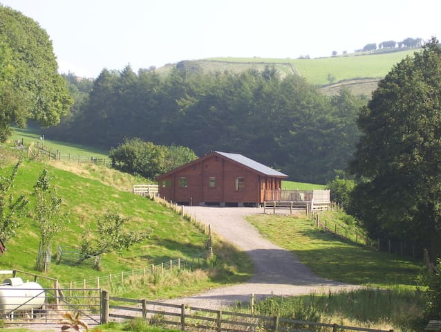 Private luxury Lodge & hot tub - Llangunllo - Cabin
