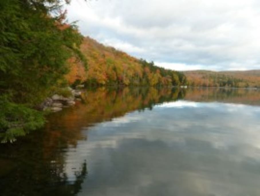 Fall foliage seen from dock