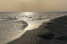 Spiaggia di Montalto di Castro