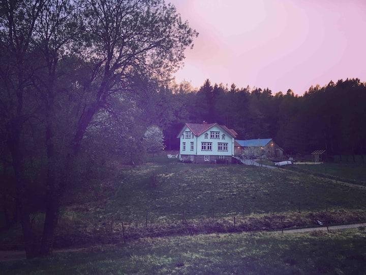 Villa Änghagen
