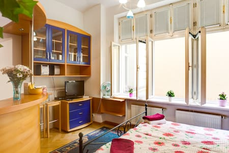 nice Studio in heart of Prague. - Prague