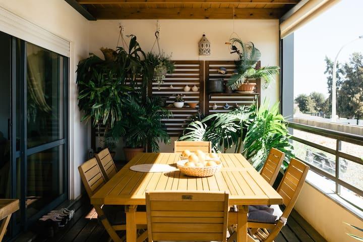 Balcony | Terrace