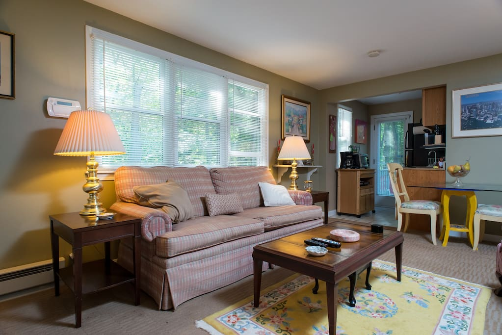 Large living area windows over looks private garden patio and 20 acres of conversation land adjacent to the property for biking, walking and running