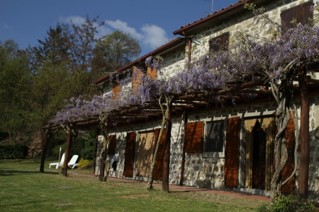 Rustico house for rent in Italy - Apartments for Rent in Bagno di Romagna, Emilia-Romagna, Italy