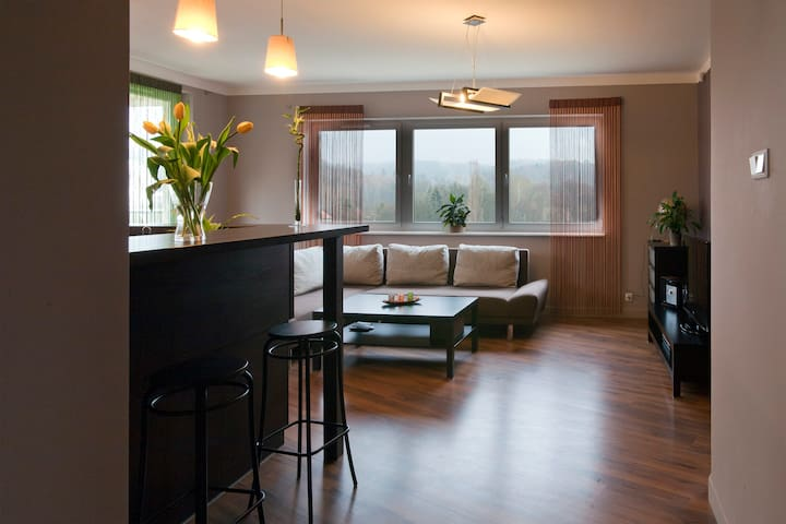 Comfortable Apartment in Gdansk - Gdansk - Appartement