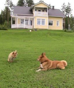 Villa Oikarainen in Rovaniemi - Rovaniemi