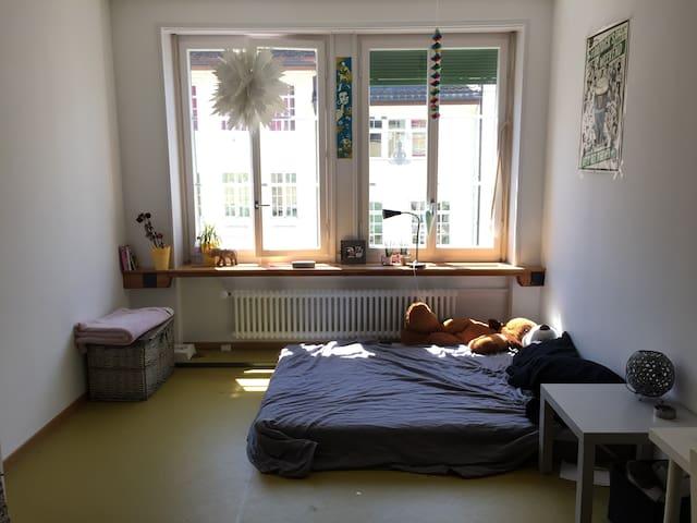 Appartement lumineux en plein centre ville