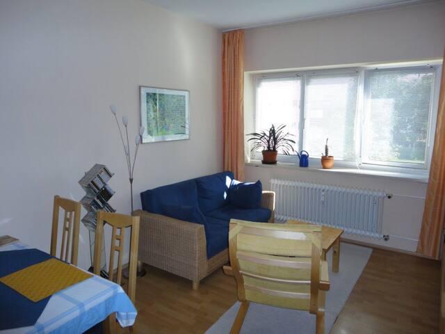 Ruhige, helle und gepflegte Zweiraumwohnung (48qm) - Fráncfort del Meno - Apartamento